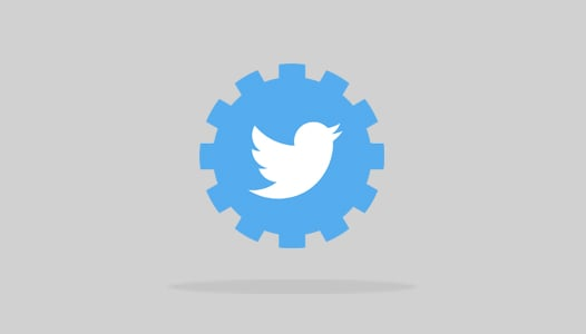 Twitter bug developer DM - API