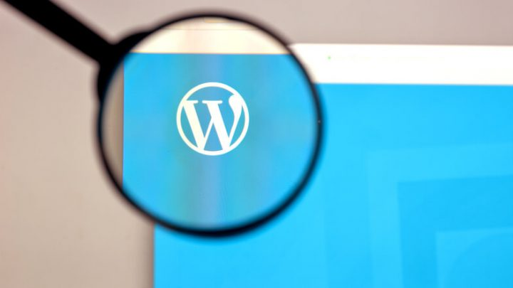 WordPress Websites Are Hacked – Vulnerability Issues